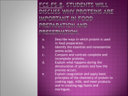 Importance of Proteins PowerPoint