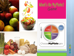 MyPlate replaces which of the following: