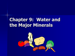 Chapter 11: Water and the Major Minerals