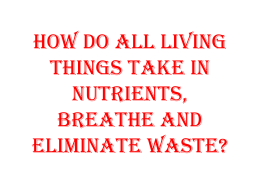 How do living things take in nutrients, breathe, and