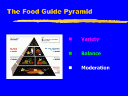 Food Guide Pyramid, The