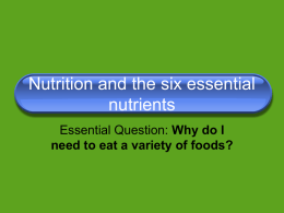 Six essential nutrient ppt