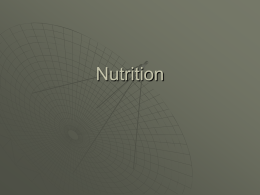 Nutrition - WordPress.com