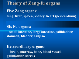 Theory of Zang