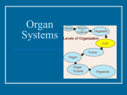 Organ Systems - BartlettsBiology11C