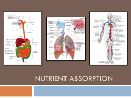 Nutrient Absorption (ALL 2015