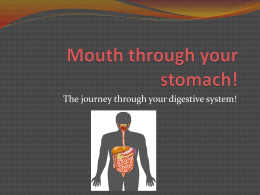 Mouth through your stomach!x