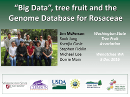"""Big Data"", Tree Fruit and the Genome Database for Rosaceae"