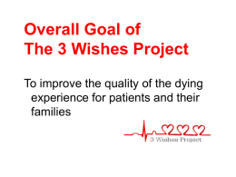 3 Wishes Project Summary Slides
