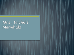 Open house presentation - Mrs. Nichols` Narwhals