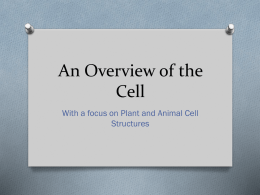 2. An Overview of the Cell