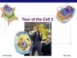 Tour of the Cell - Explore Biology