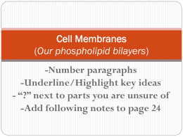 Cell Membranes (Our phospholipid bilayers)