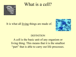 Cells & Microscope PowerPoint