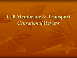 Membrane & Transport Review