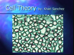 The Cell Theory - CGW-Life-Science