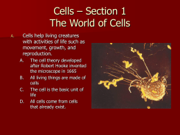 Section 1 The World of Cells
