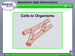 Cell to Organisms