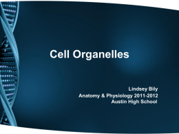 Anatomy & Physiology of the Cell