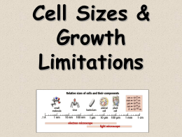 Cell Size Limitations Notes1