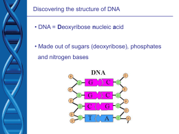 Deoxyribose nucleic acid