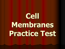Cell Membranes Practice Test