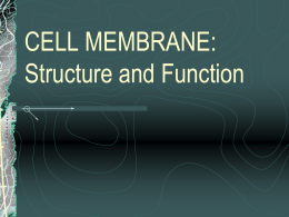 CELL MEMBRANE: Structure and Function