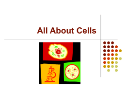 All About Cells
