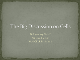 The Big Discussion on Cells