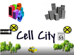 Cell City Analogy