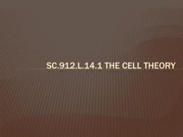 SC.912.L.14.1 Cell Theory