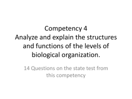 Competency 4 Analyze and explain the structures and