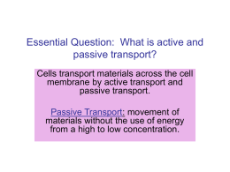 Essential Question: What is active and passive transport?