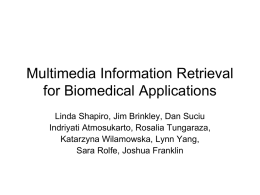 Multimedia Information Retrieval for Biomedical Applications