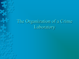 The Organization of a Crime Laboratory