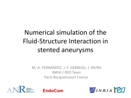 Numerical simulation of the Fluid-Structure Interaction in