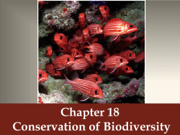 Chapter 18 Conservation of Biodiversity