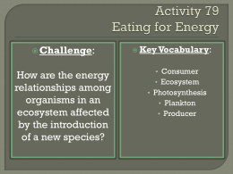 Activity 79 Eating for Energy