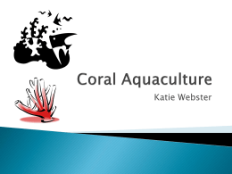 Aquaculture Presentation_WebsterK