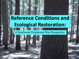 Reference Conditions and Ecological Restoration: