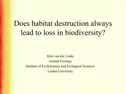 Does habitat destruction always lead to loss in biodiversity?