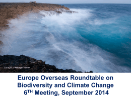 Europe Overseas Roundtable - International Union for