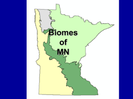 MN Biomes - RschoolToday