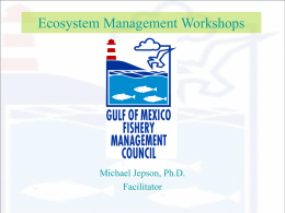 Gulf of Mexico Fishery Management Council Ecosystem