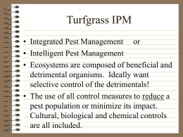 Turfgrass IPM - Nc State University