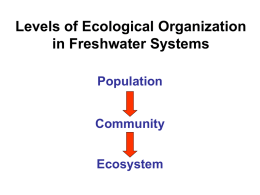 Levels of Ecological Organization in Freshwater Systems