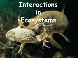 Interactions - ScienceGeek.net