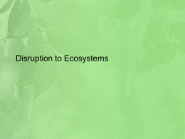 Disruption to Ecosystems