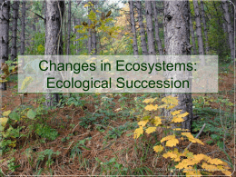 Ecological Succession - Lake Station Community Schools