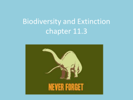 Biodiversity and Extinction chapter 11.3